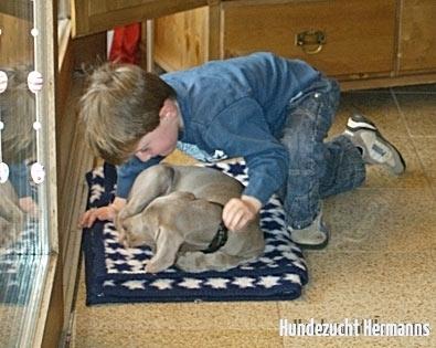 Marvin mit seinem neuen Freund Paul