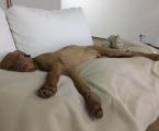Rufus - geschafft!
